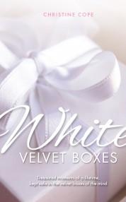 White Velvet Boxes